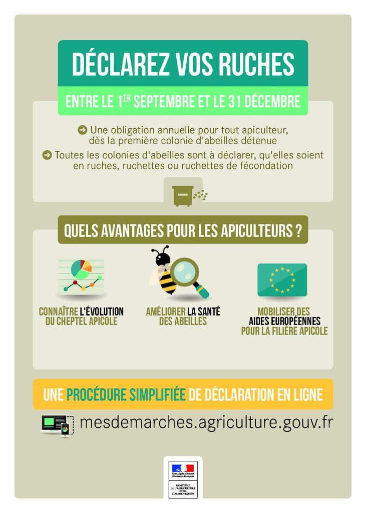 thumbnail of Affiche déclaration de ruches 2017